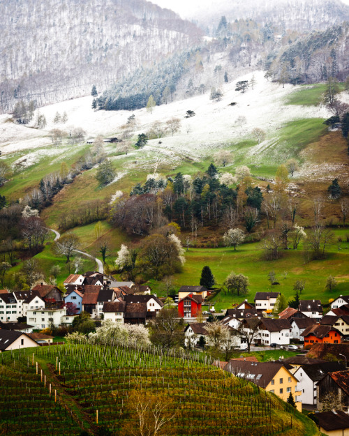 westeastsouthnorth:  Liechtenstein