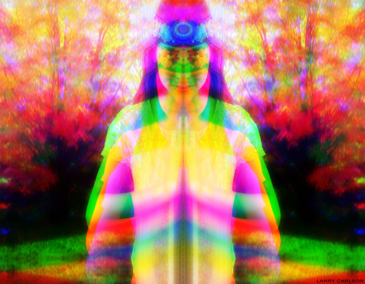 LARRY CARLSON, digital photography, 2010.