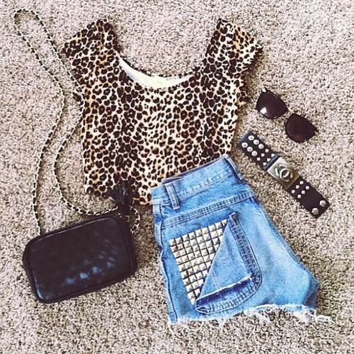Cheetah on We Heart It. http://weheartit.com/entry/62228120/via/Bebelovsu