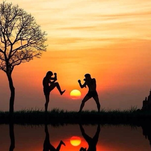 muaythaimovement:  Beautiful pic! #muaythai #muay thai #mma #kickboxing #boxing #photo #art #Sunset