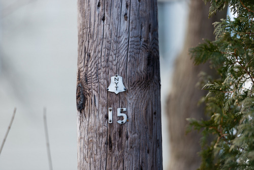 15 on Flickr.Via Flickr:  Long Island New York