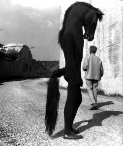 red-lipstick:  Jean Cocteau - The Testament of Orpheus, 1960            Films A still from Jean Cocteau's 1960 film The Testament of Orpheus.