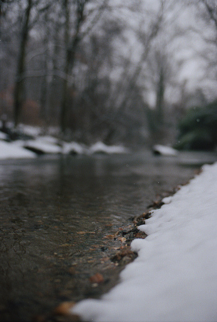 lizmcdeath:  Darby Creek by Owen Luther on Flickr.