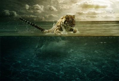 Tiger Leap in the Water by PSHoudini