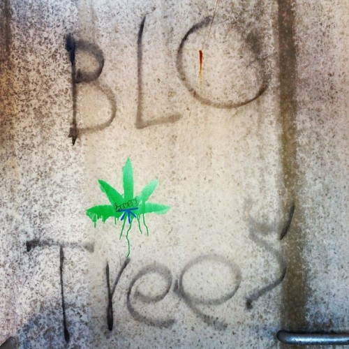 #art #graffiti #ganja #weed #smoke  (at Ames, IA)
