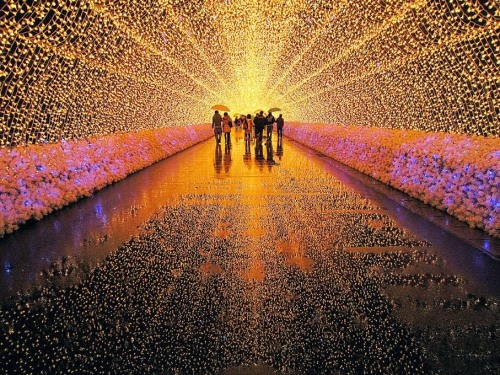 Light Show in Japan.
