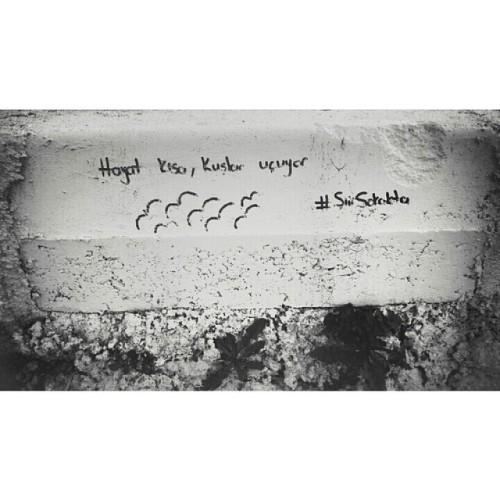 csüreya.  #Şiirsokakta #şiirçınarcıkta