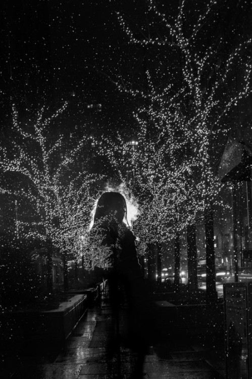 'Lights in Chicago' by Satoki Nagata