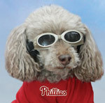 Woof-Woof. Here's your invite to the Phillies Pup Rally on Sunday, March 24, at Schuylkill River Park, 1-3pm. Lots of fun for our four-leggedfans, who get to march in a pup parade with the one and only #RedPhanatic. Plus, cats and dogs will be on site to adopt. Details»http://atmlb.com/10xaFCX