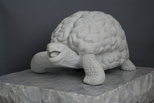 Jan Fabre Turtle Brain (2012)