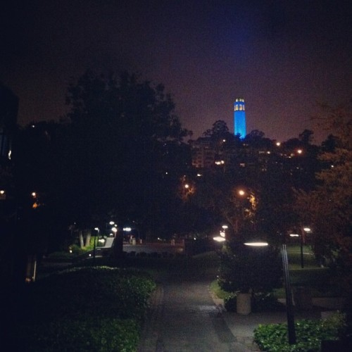 Coit lit up last night. Still very much in awe of this city, even after living here for years.