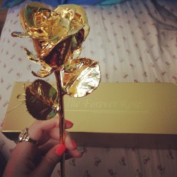 I want a gold rose <3