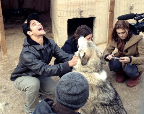 heathyr:  teenwolf:  Why are you Tyler and Holland playing with a REAL LIVE WOLF? You'll have to wait and see…  WOLVES