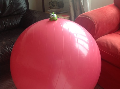 thingssittingonmyexerciseball:  Here is Om Nom, happily sitting on my pink exercise ball!