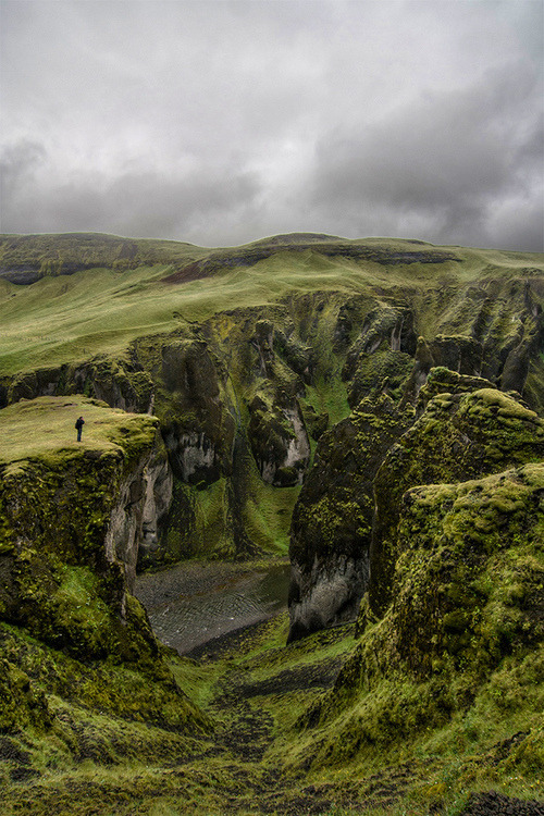 bluepueblo:  Solitude, Fjaðrárgljúfur Canyon, Iceland photo via caught