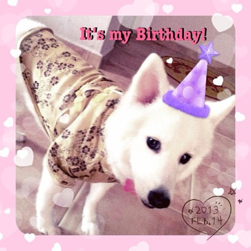 Happy Birthday #yuki