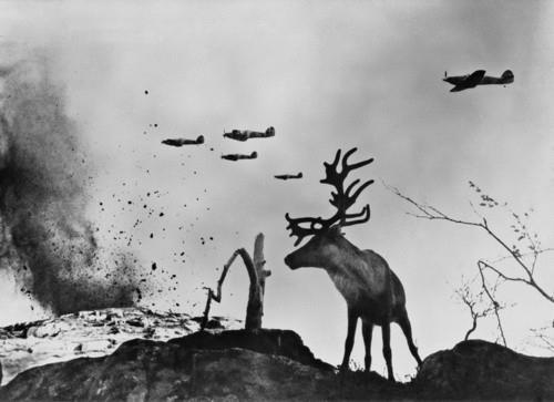 thedemiroff:  A Deer onlooks adjacent to Soviet bombers over Seelow, Germany 1945.
