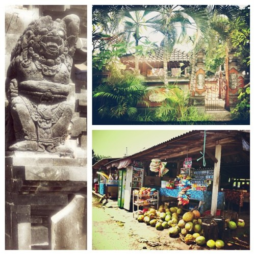 Canggu is the place to be! #balinese #ilovebali #bali #indonesia #instalike #instagramers #igdaily #sun #green #explore #lovelife #smiles #temples #coconuts #statues