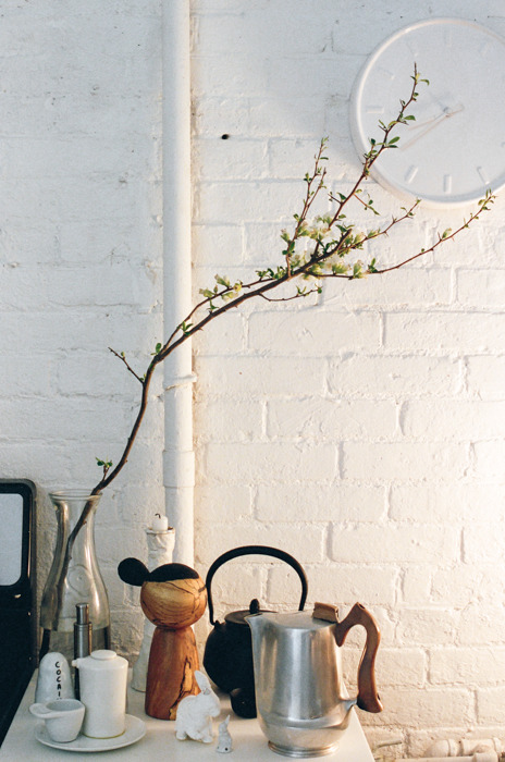 brianwferry:  Terence Koh's kitchen, photographed for The Aesthete - April 2013 http://theaesthete.com/story/view.dT/koh-my-god (Photo: Brian Ferry)