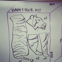 Today's science lesson on where baby tigers come from.