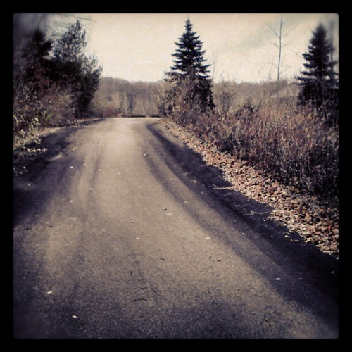 #path #road #trees #winter #trip #adventure #memories #direction #shadow #shapes #