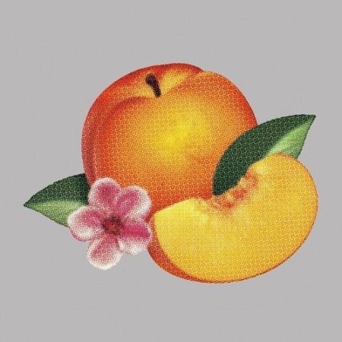 Hear Phoenix's new album Bankrupt! and read our review of the LP