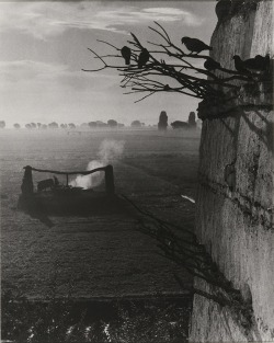 luzfosca:  Paul Strand  Waterwheel and Colossi, Gurna, Egypt, 1959