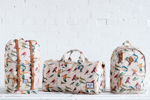 "beyondfabric:  Herschel Supply Co. SS13 ""Bird Print"" Collection  Portlandia was right! Putting birds on things makes everything better!"