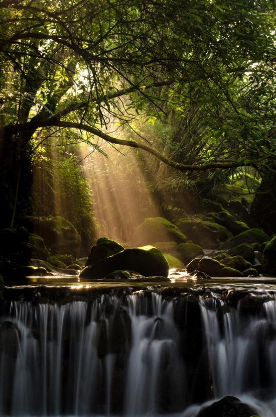 haughtyspirit:  bluepueblo:  Sun Ray Waterfall, Taiwan photo via pine  Truly appreciating the most glorious of lights today…