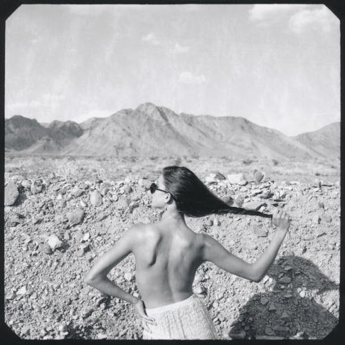 mini-hips:  AMARGOSA by Neil Krug on Flickr.