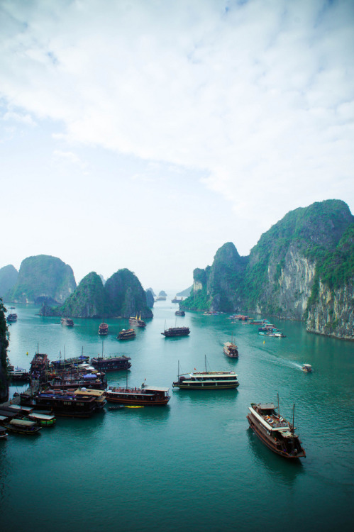 torace:  Ha Long Bay