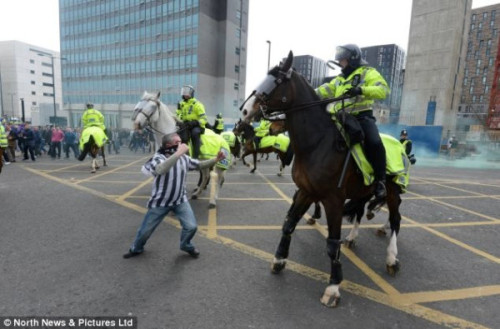 Here's a Newcastle fan trying to fight a horse. Elegant cross-field ball from @savagefletch