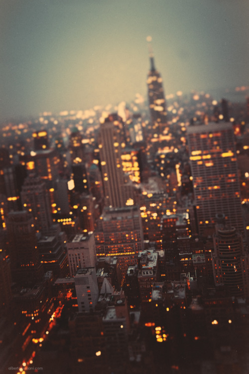 brutalgeneration:  Twilight, II. (by BeboFlickr)
