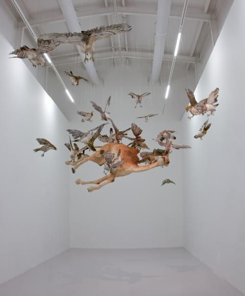 Cai Guo-Qiang - Flying Together (2011)