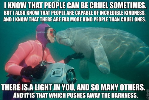 "calmingmanatee:  [Image description: A photograph of a manatee and a person in a wet suit, holding a camera. They are touching noses. TEXT: ""I know that people can be cruel sometimes. But I also know that people are capable of incredible kindness. And I know that there are far more kind people than cruel ones. There is a light in you, and so many others. And it is that which pushes away the darkness.] [Source: Phillip Colla of oceanlight.com]  ""A day for calming manatee."" I agree."