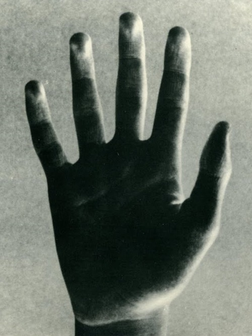 losed:  Bruno Munari