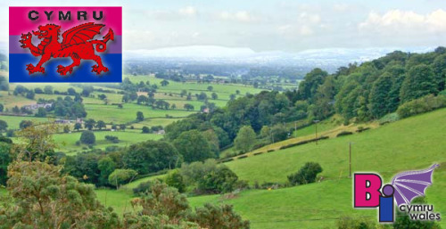 bisexual-community:  Bisexual and Bi-Friendly Groups in Wales/(Cymru) UK Bi Cymru/Wales: This group is connected to the Bi Wales network, and is intended as a social place for Welsh Bisexuals and their supporters to come together, and discuss issues that effect their lives. Bi Cymru/Wales is the all-Wales social support network for bisexual people and those who think they may be bi. Membership of this group is open to anyone who supports Bi Cymru/Wales and in no way implies a person's sexuality. Rustic Rainbow: A very bisexual & transgender welcoming casual and fun group for ALL LGB&T people who love the natural beauty of North Wales. We are based in the Denbighshire/Flintshire area and just want to provide a relaxing environment so LGBT people can make friends and enjoy activities together such as walking, the cinema and days out! Bi Swansea: A group for anyone attracted to more than one gender or who thinks they may be and who lives in Swansea or the surrounding areas. This group is for those who are Bi or think they may be Bi, Bi supportive people and their friends and families. Membership of this group is open to anyone bi supportive, regardless of their sexuality. This is a space to discuss issues affecting us and to socialise in safe, bi-friendly surroundings. Planning spring and summer events now. People are invited to join and asked to please pass this information on to others. Thank you