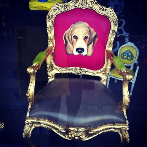 #art on the high street #furniture #cool #want #puppy #London #trendy #royal #status