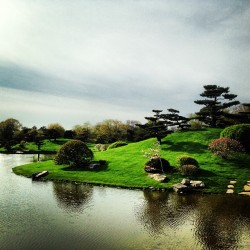 Man made paradise.  #chicago #botanicalgarden #earth
