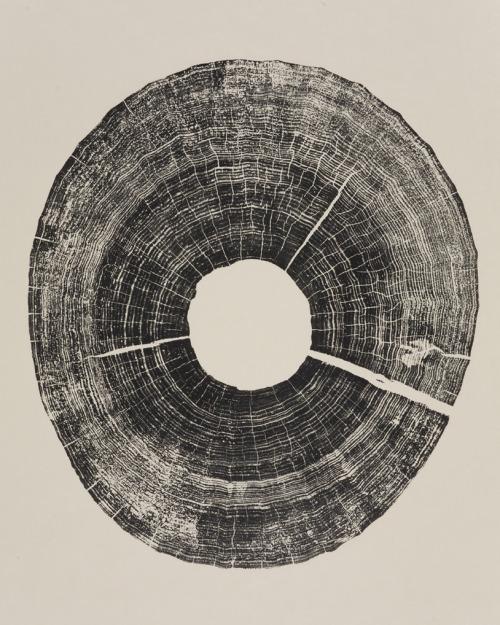 showslow:  Bryan Nash Gill, woodcuts.