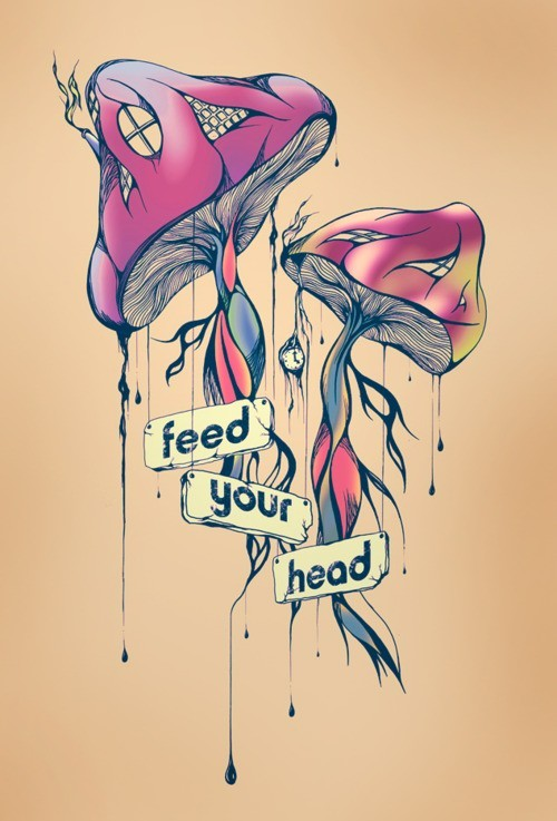 Feed it    #trippy, #drugs, #shrooms, #psychedelic