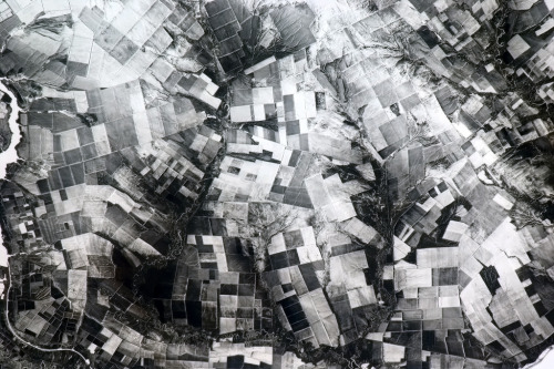 colchrishadfield:  Crazed patchwork of farms in Central Asia, a monochromatic 3D hallucination in the snow.