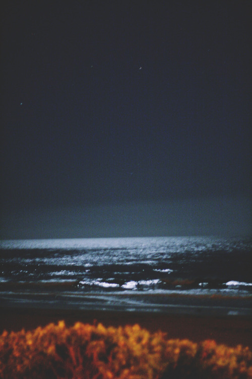 brutalgeneration:  west coast night ocean (by melissa☞lakhena)