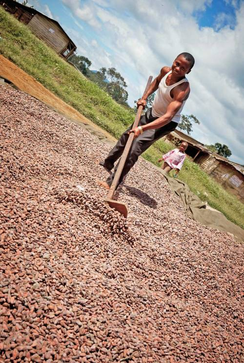 Cocoa is an important crop in Cameroon, accounting for 42% of the country's GDP. This year, with climate change and poor quality inputs such as dirty water, trading prices dropped by 19%. Unsafe water not only affects an individual's well being, but also hinders a country's progress towards economic growth.  Learn more at http://thewatercollective.org