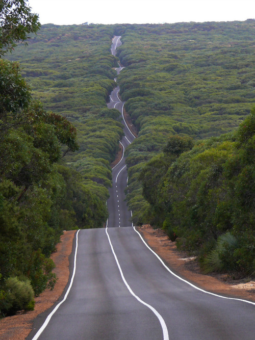 geniusofthehole:   Road on Kangaroo Island (by IAGD+P)