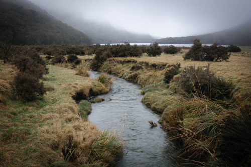 definitelydope:  Caples Track, nr Queenstown, New Zealand (by goneforawander)