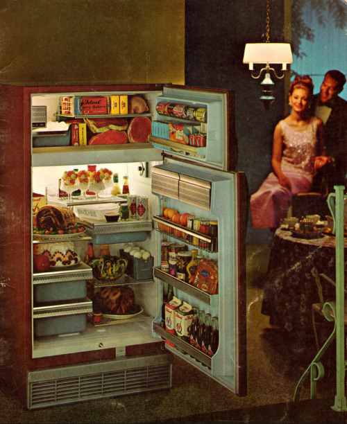 1965-66 Sears Coldspot Refrigerator/Freezer Via