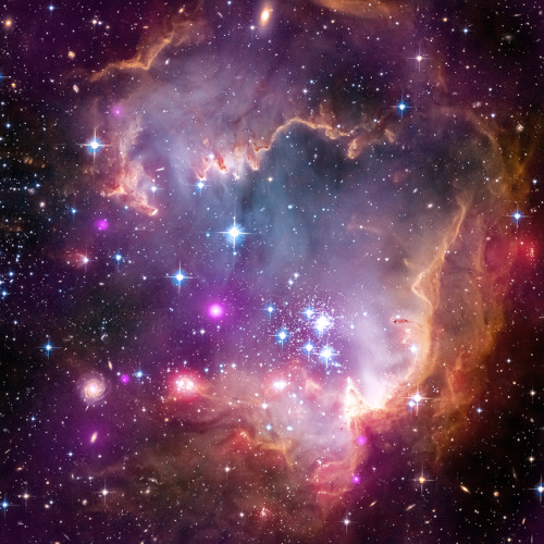 ecocides:  The Small Magellanic Cloud (SMC) is one of the Milky Way's closest galactic neighbors. Even though it is a small, or so-called dwarf galaxy, the SMC is so bright that it is visible to the unaided eye from the Southern Hemisphere and near the equator. Many navigators, including Ferdinand Magellan who lends his name to the SMC, used it to help find their way across the oceans. (Read more) | image: NASA/CXC