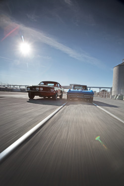 pazma:  1967 Shelby GT500 vs 1967 Corvette Sting Ray 427