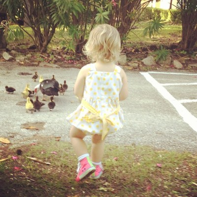 Following baby following baby ducks. #ducks #baby #niece #cute #love